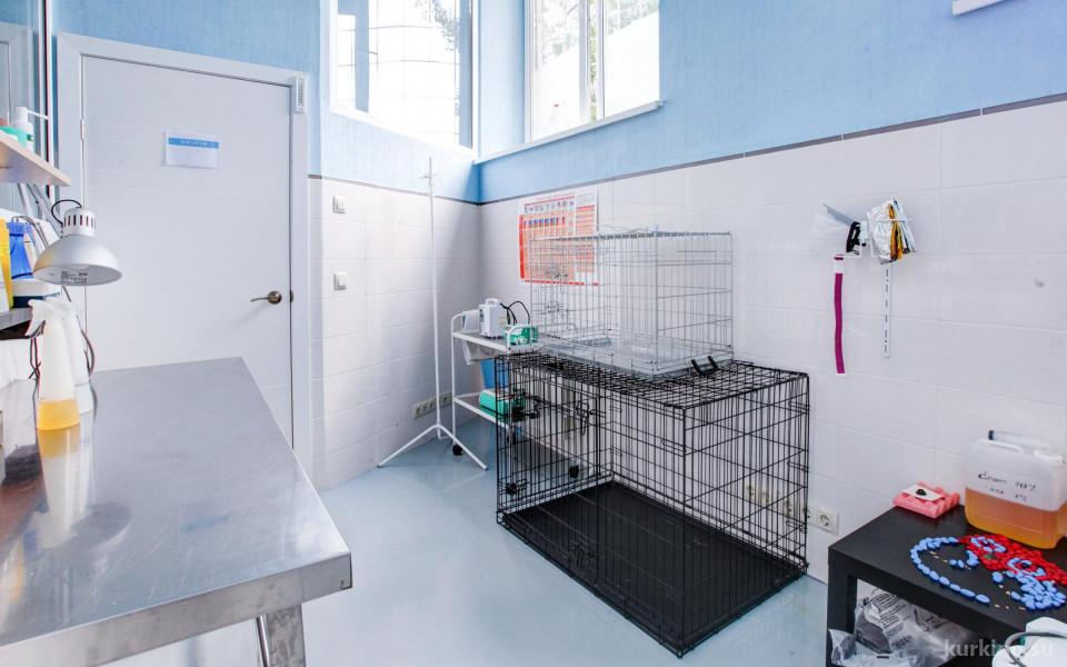Ветеринарная клиника Ветландия в Куркино Изображение 5
