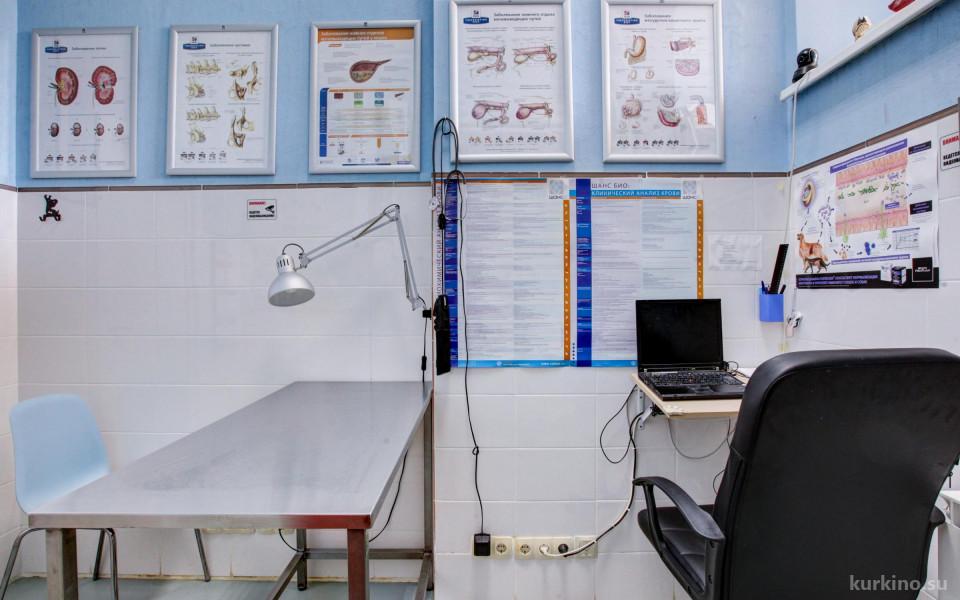 Ветеринарная клиника Ветландия  в Куркино Изображение 4