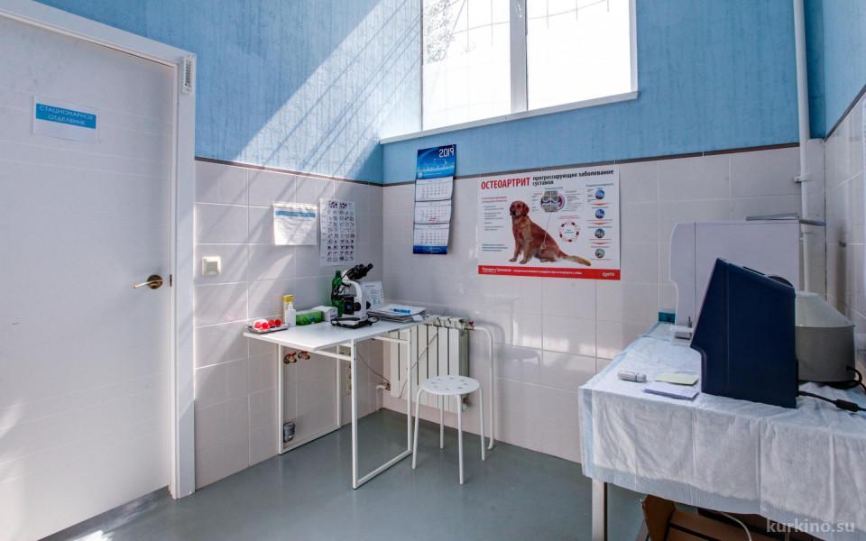 Ветеринарная клиника Ветландия в Куркино Изображение 2
